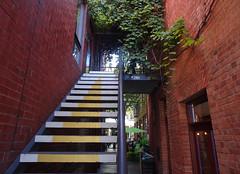 Stairs Between Bricks
