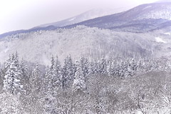Myoko winter mountains