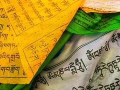 Scripture, Lhasa, Tibet, 拉萨,西藏