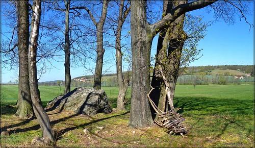 Der Riesenstein im Gosebachtal