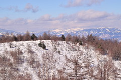 Yunomaru winter landscapes