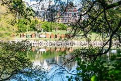 Spring scent in city park (Kungsparken)