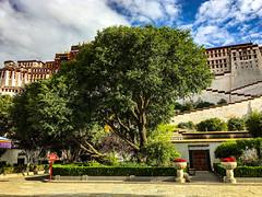 Potala Palace,Lhasa, Tibet, 布达拉宫,拉萨,西藏