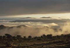200612_Yemen_scan_77