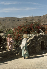 200612_Yemen_scan_49