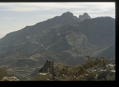 200612_Yemen_scan_46