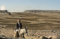 200612_Yemen_scan_24