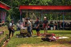 Tongkonan Nonongan