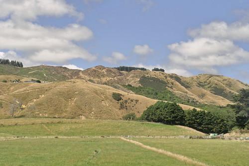 Napier - Wellington_1810919_dxo