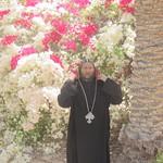 الراهب القمص حياة الأثيوبي المحرقي (14)