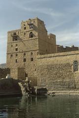 200612_Yemen_scan_15