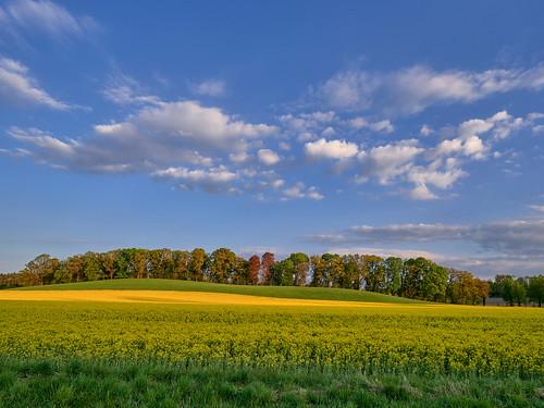 Colorful Sunset in Ebersberg - Bavaria