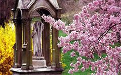 "Cincinnati - Spring Grove Cemetery & Arboretum ""Bugher Monument Sandwiched In Springtime"""