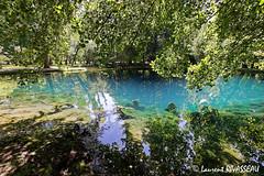 Fontaines Bleues de Beaulon Septembre 2007  MG1963