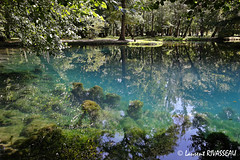 Fontaines Bleues de Beaulon Septembre 2007  MG1958
