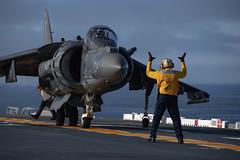 A Sailor signals to an AV/8B Harrier on the flight deck of USS Essex (LHD 2)