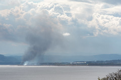 2020 Tay Reedbed Fire