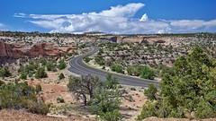 Highway Curving thru Canyon Lands NP