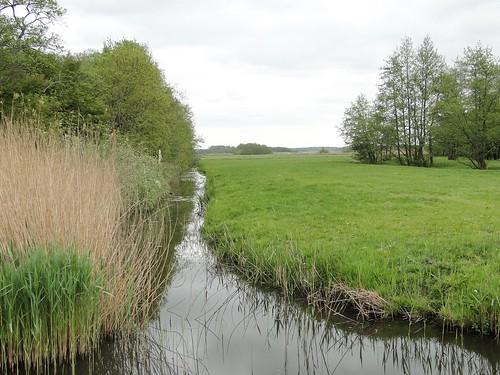 Looking east from polder to hills of Utrecht
