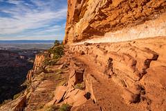The High Trail (4-28-20)
