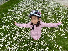 Wild flowers and child