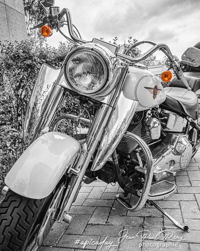 Harley‑Davidson