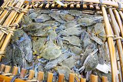 Crabs, Kep, Cambodia