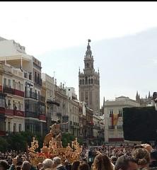 Semana Santa de Sevilla. (Plaza de San Francisco).