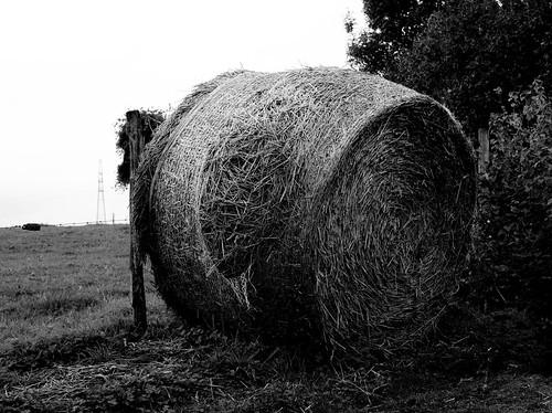 8e Biennale de photographie en Condroz