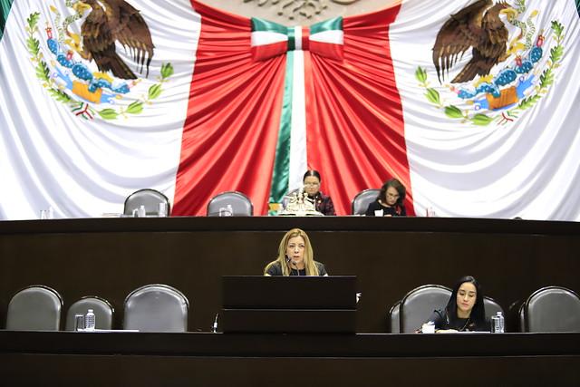 07/02/2019 Tribuna Dip. Sandra Paola González Castañeda