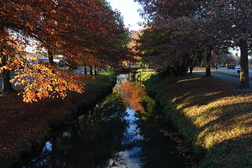Heathcote River in the autumn