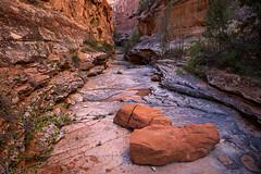 Ribbon Canyon Narrows (4-29-20)