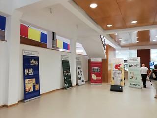 2019 Septiembre. Inauguración de la exposición sobre Francesc Boix. Redondela (Pontevedra)