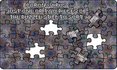 Coronavirus puzzle - one or two pieces still to sort