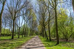 2020-04-19 - Natuurpark Lelystad