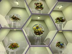 Imagine Museum-2462