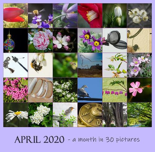 april group 2020 mosaic