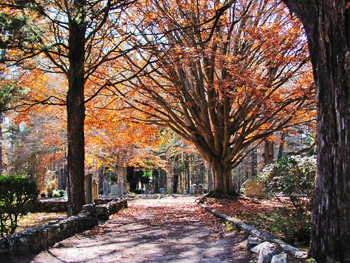 Fairview Cemetery, Warrenton, North Carolina