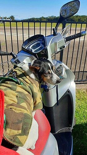 Shanti out and about on the new scooter