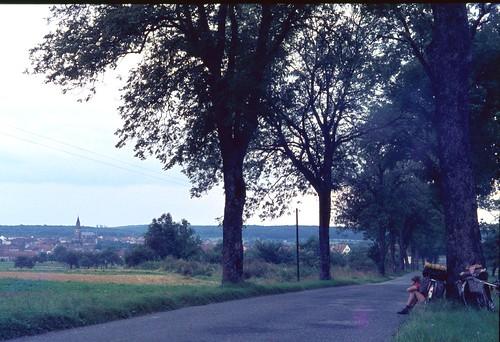 Route N419 (D919) Siltzheim, Bas-Rhin, France 1963