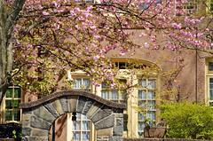 Spring In The Gardens