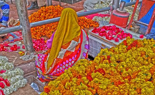 Flower Power Old Delhi 20200221_152323