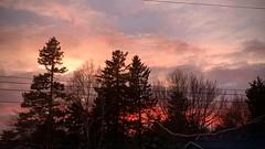 Burst of sunset colour
