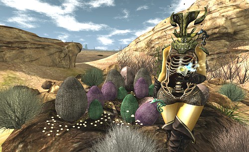 Protector of the Dragon Eggs
