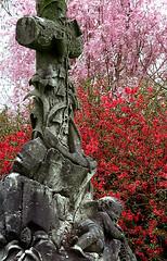 "Cincinnati - Spring Grove Cemetery & Arboretum ""Ceoss & Infant In Springtime"""