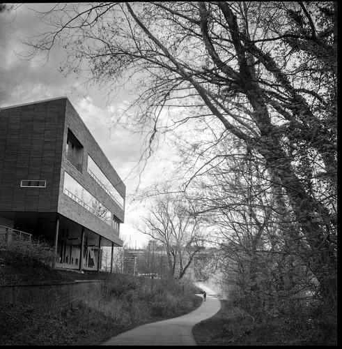 urban landscape, curvilinear pathway, tree forms, New Belgium Brewery, Asheville, NC, Ricohflex Dia M, Bergger Pancro 400, HC-110 developer, April 2020