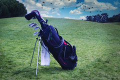 lonely golf bag, waiting...