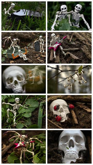 Skeleton photo shoot