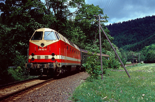 DR 219 152 Blechhammer (Thür) 29.05.1993