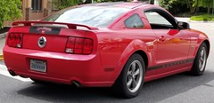 ZOOM (ZOOMMMM) Fast Red Mustang